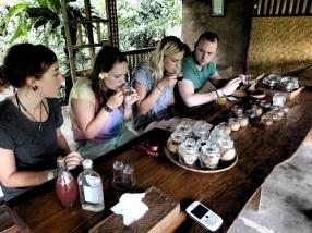Ubud_Coffee_farm