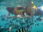 Snorkeling Nisa Dua