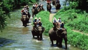 bali_elephant_ride_seminyak