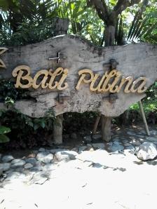 Coffee_farm_bali_pulina