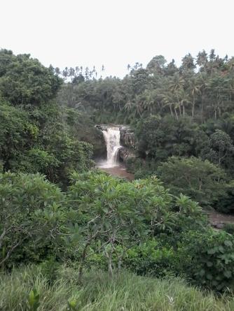 Treeking at Waterfall