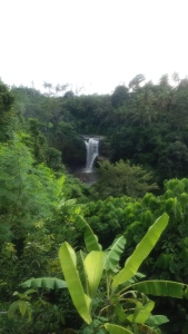 Ubud_waterfall
