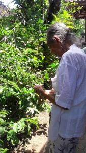 Balinese_healer_cokorda_rai_ubud