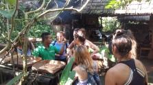 Bali_coffee_plantation