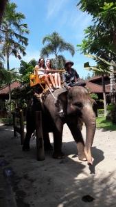 Seminyak_elephant_tour