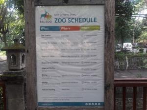 Bali_zoo_schedule