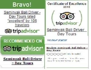 bali_driver_reviews