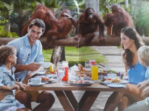 Breakfast_with_orang_utans