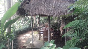 D'alas_Restaurant_Ubud