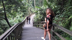 monkey_forest_ubud