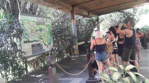 Seminyak_taxi_to_bali_safari