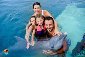 bali_swiming_with_dolphin