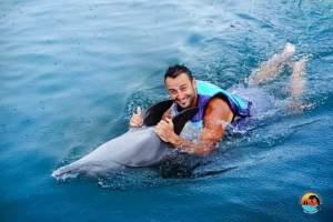 bali_dolphin_lodge