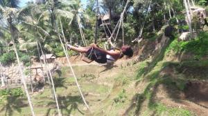 bali_swing