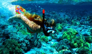 tanjung_jepun_snorkeling