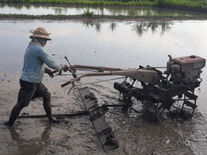 Rice field work on tracktor machine
