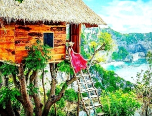 Tree_House_Penida